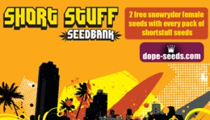 shortstuff snowryder free giveaway