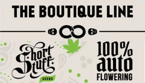 The Boutique Line from Shortstuff Seeds