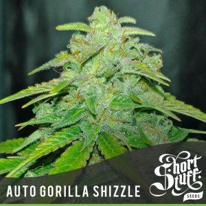 auto gorilla shizzle bush