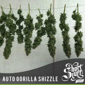 auto gorilla shizzle buds